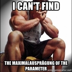 Fit Guy Problems - I Can't find the Maximalausprägung of the Parameter