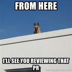 Roof Dog - from here i'll see you reviewing that PR