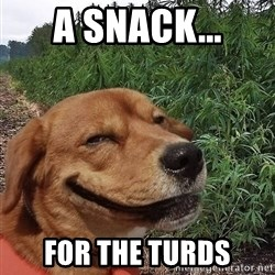 dogweedfarm - A snack... for the turds