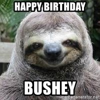 Sexual Sloth - Happy birthday Bushey
