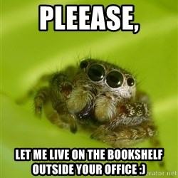 The Spider Bro - Pleease, let me live on the bookshelf outside your office :)