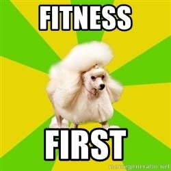 Pretentious Theatre Kid Poodle - Fitness First