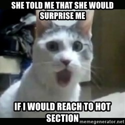 Surprised Cat - she told me that she would surprise me if I would reach to hot section