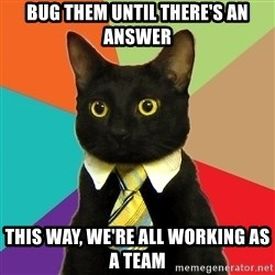 BusinessCat - Bug them until there's an answer This way, we're all working as a team