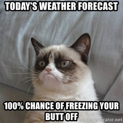 Grumpy cat 5 - today's weather forecast 100% chance of freezing your butt off