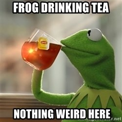 Kermit The Frog Drinking Tea - Frog drinking tea  Nothing weird here