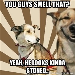 Stoner dogs concerned friend - You guys smell that?  Yeah, he looks kinda stoned..