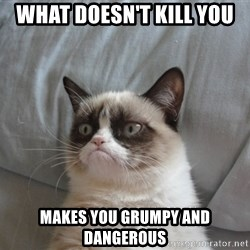 Grumpy cat 5 - What doesn't kill you Makes you grumpy and dangerous
