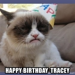 Birthday Grumpy Cat -  Happy Birthday  Tracey