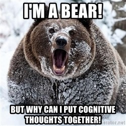 Clean Cocaine Bear - I'm a bear! But why can I put cognitive thoughts together!