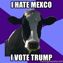 Coworker Cow - i hate mexco i vote trump