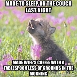 Baby Insanity Wolf - Made to sleep on the couch last night made wife's coffee with a tablespoon less of grounds in the morning