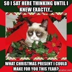 GRUMPY CAT ON CHRISTMAS - So I sat here thinking until I knew exactly... what christmas present I could make for you this year?