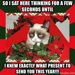 GRUMPY CAT ON CHRISTMAS - So I sat here thinking for a few seconds until  I knew exactly what present to send you this year!!!