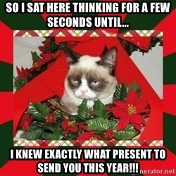 GRUMPY CAT ON CHRISTMAS - So I sat here thinking for a few seconds until... I knew exactly what present to send you this year!!!