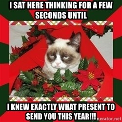 GRUMPY CAT ON CHRISTMAS - I sat here thinking for a few seconds until I knew exactly what present to send you this year!!!