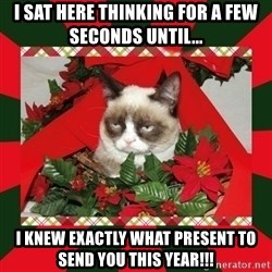 GRUMPY CAT ON CHRISTMAS - I sat here thinking for a few seconds until...  I knew exactly what present to send you this year!!!