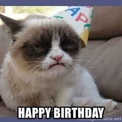 Birthday Grumpy Cat -  happy birthday