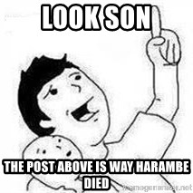 Look son, A person got mad - LOOK SON THE POST ABOVE IS WAY HARAMBE DIED