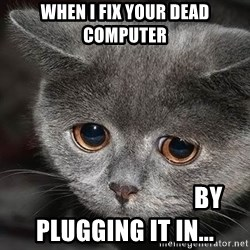 sad cat - When I fix your dead computer                                   By plugging it in...