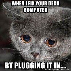 sad cat - When I fix your dead computer  By plugging it in....