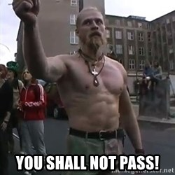 Techno Viking -  You shall not pass!