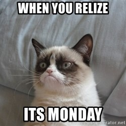 Grumpy cat 5 - When you relize its monday