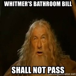 Gandalf You Shall Not Pass - whitmer's bathroom bill shall not pass