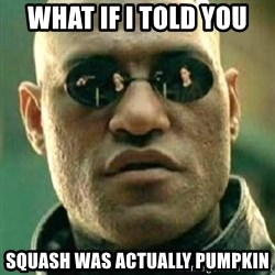 what if i told you matri - what if i told you squash was actually pumpkin
