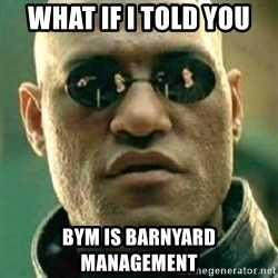 what if i told you matri - what if i told you BYM is barnyard management