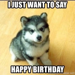 Baby Courage Wolf - i just want to say happy birthday