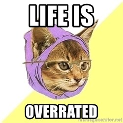 Hipster Cat - Life is Overrated