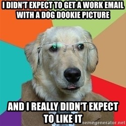 Business Dog - I didn't expect to get a work email with a dog dookie picture and i really didn't expect to like it