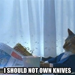 Sophisticated Cat -  I should not own knives