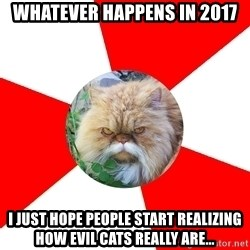 Diabetic Cat - Whatever happens in 2017 I just hope people start realizing how evil cats really are...