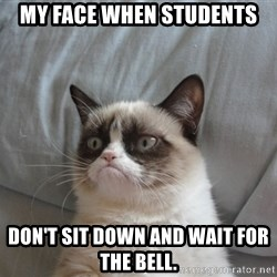 Grumpy cat 5 - my face when students don't sit down and wait for the bell.