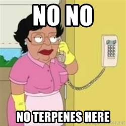 Family guy maid - No no no terpenes here