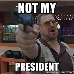 WalterGun - Not my President