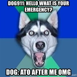 Spoiler Dog - dog911: hello what is your emergency? Dog: ato after me omg