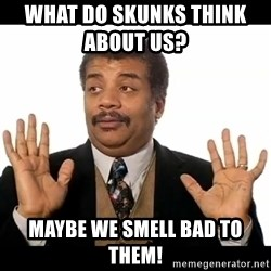 AY YA - what do skunks think about us?         maybe we smell bad to them!