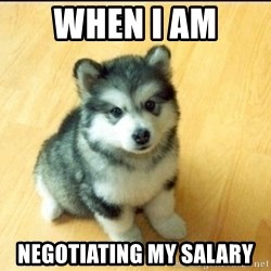 Baby Courage Wolf - when i am  negotiating my salary