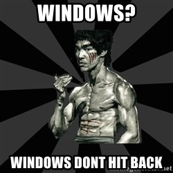 Bruce Lee Figther - Windows? Windows dont hit back