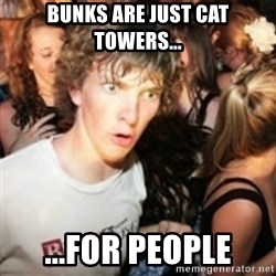 sudden realization guy - Bunks are just cat towers... ...For people