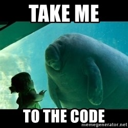 Overlord Manatee - Take Me  to the code