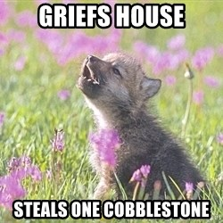 Baby Insanity Wolf - griefs house steals one cobblestone