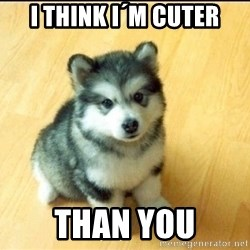 Baby Courage Wolf - i think i´m cuter than you