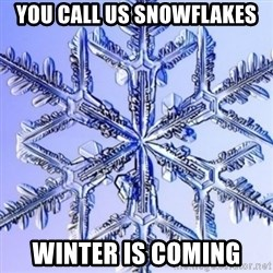 Special Snowflake meme - You call us snowflakes Winter is coming