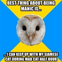 Bipolar Owl - Best thing about being manic is... ... I can keep up with my siamese cat during mad cat half hour