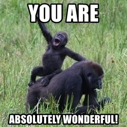 Happy Gorilla - You are  absolutely wonderful!