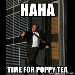 HAHA TIME FOR GUY - HAHA Time for poppy tea